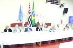 Rotary_Mesa diretora nafestiva