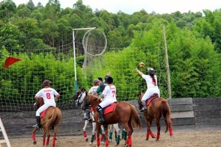 Disputas em Tatuí neste fim de semana movimentam o horseball mundial. (Foto: Site/Horseball Brasil)